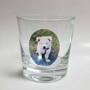 """""""愛犬ダンプちゃん""""のオリジナルグラスです。"""